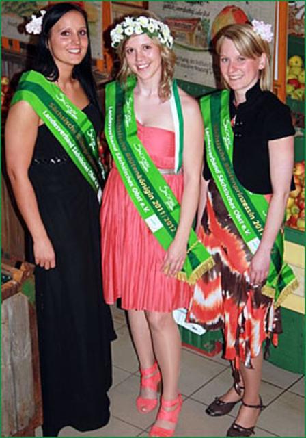 vk-Königin und Prinzessinen 2011.png